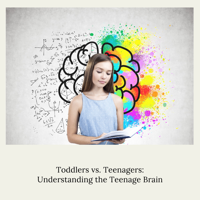 Toddlers vs. Teenagers_ Understanding the Teenage Brain